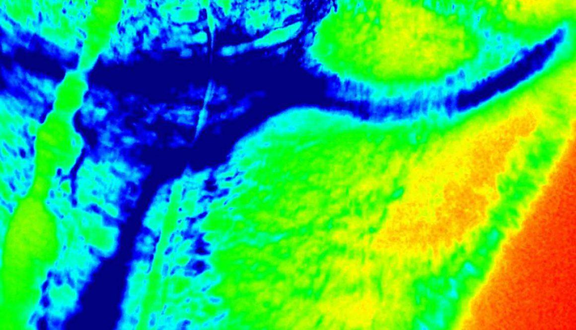 Cámaras infrarrojas y térmicas en drones de Skydron