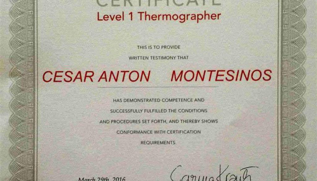 termografía aérea con drones certificado