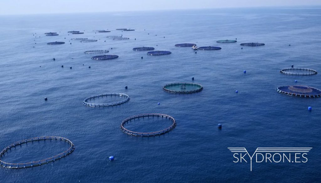 drones-mar-piscifactoria-video-corporativo-001