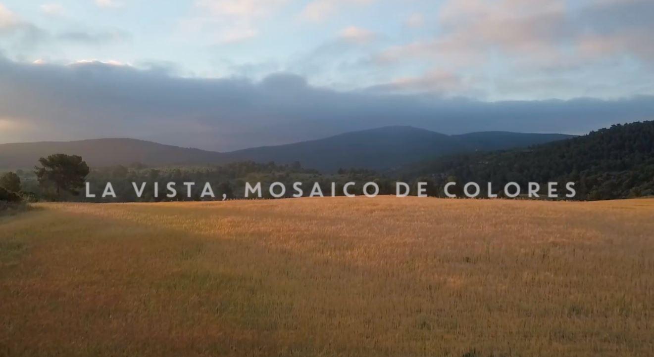 Vídeos aéreos con drones para bodegas y fincas vinícolas: San Blas, los cinco sentidos del vino.